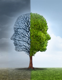Conceptual illustration of a tree as metaphor of mental illness versus mental health