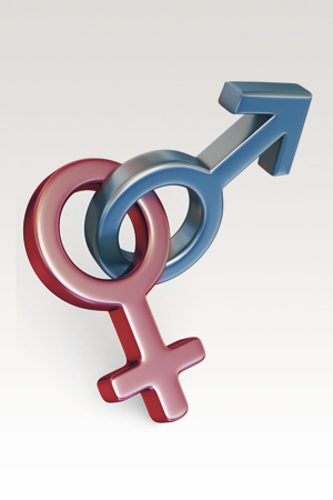 Illustration of a woman and a man symbol intertwined.
